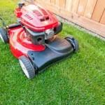 garden-cleaning